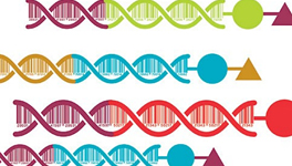 How DNA-encoded compound libraries are revolutionizing drug discovery.