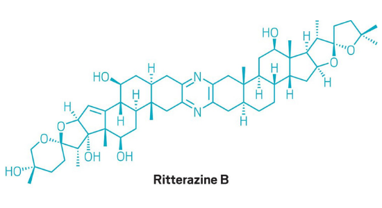 Total synthesis of ritterazine B gives enough to study the molecule's therapeutic potential.