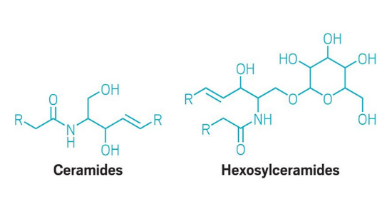 The oily secretions from skin may carry signatures of Parkinson's disease.