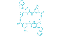 Sweeter hookups between sugars, thanks to a macrocyclic catalyst.