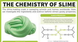 The chemistry of slime.