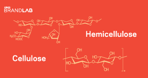 The Chemistry of Delight: Part One  Brought to you by The Chemours Company