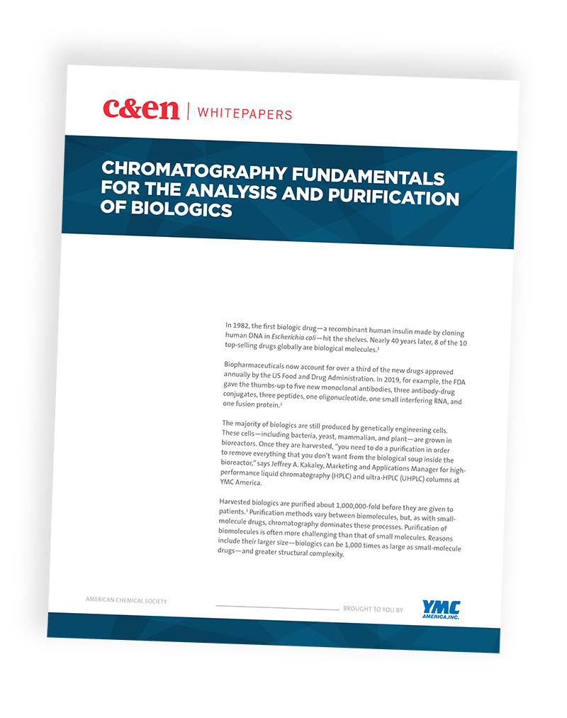 Chromatography Fundamentals for the Analysis and Purification of Biologics